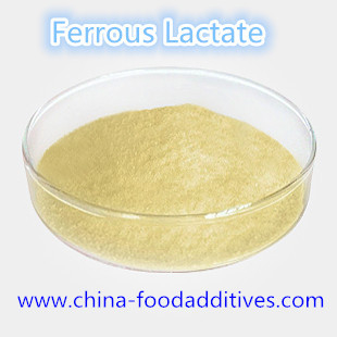 China Food Additives Ferrous Lactate food grade CAS:5905-52-2 distributor